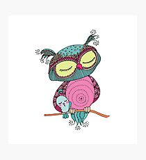 Cute colorful owl and little bird sitting on tree branch Photographic Print