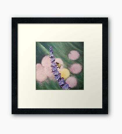 Bee gathering pollen on lavender Framed Print