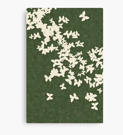 Butterflies Galore 3 Canvas Print