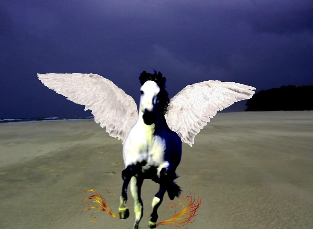 Arabian in Byron by mantahay