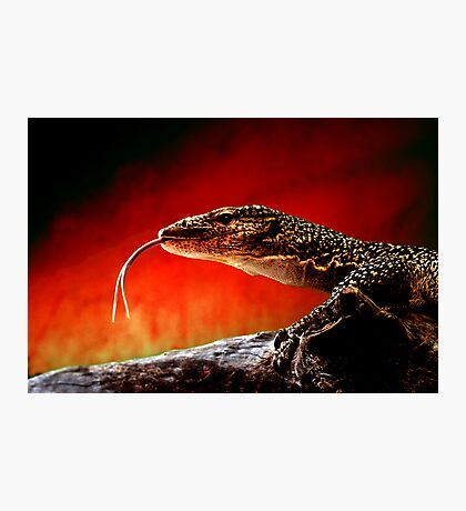 Keeper of The Flame Photographic Print
