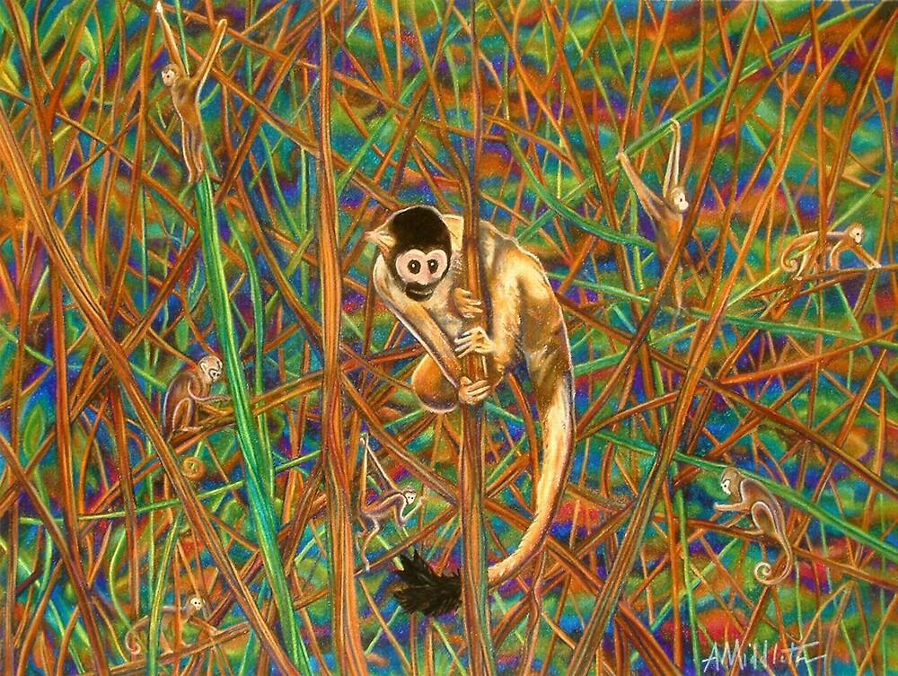 Spider Monkey by Anthony Middleton