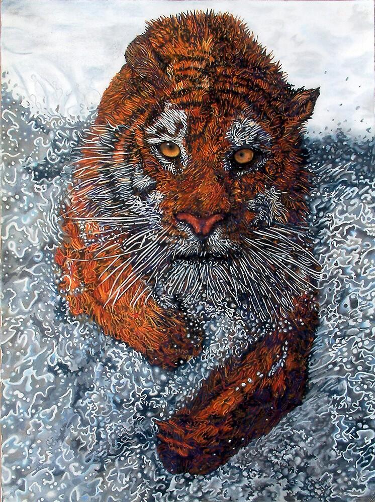 Tiger by Anthony Middleton