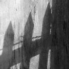 Shadows by Rebecca Brann