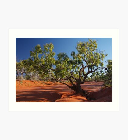 Morning, Hay River, River Bed, North Simpson Desert Art Print