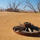 Cart Wheel,Outback Australia,Qld by Joe Mortelliti