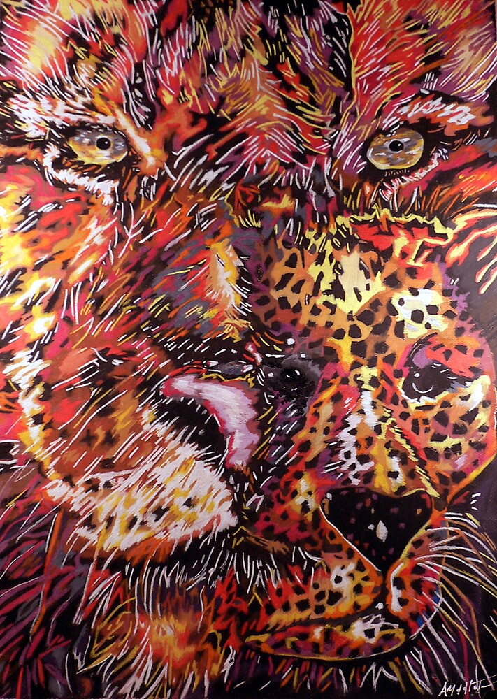 Big Cats by Anthony Middleton