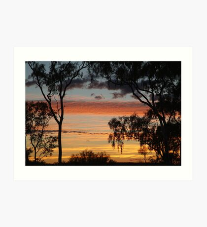 Sunrise through the Ghost Gums,Batton Hill,North Simpson Desert Art Print