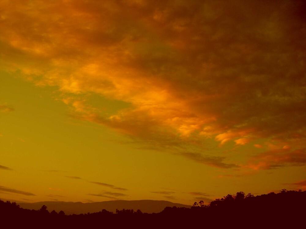 sunset by buddy