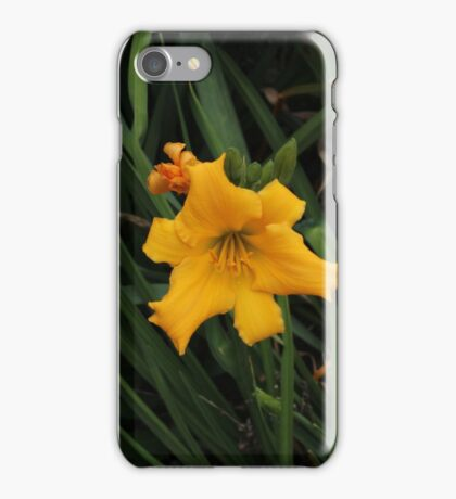Bud & Bloom iPhone Case/Skin