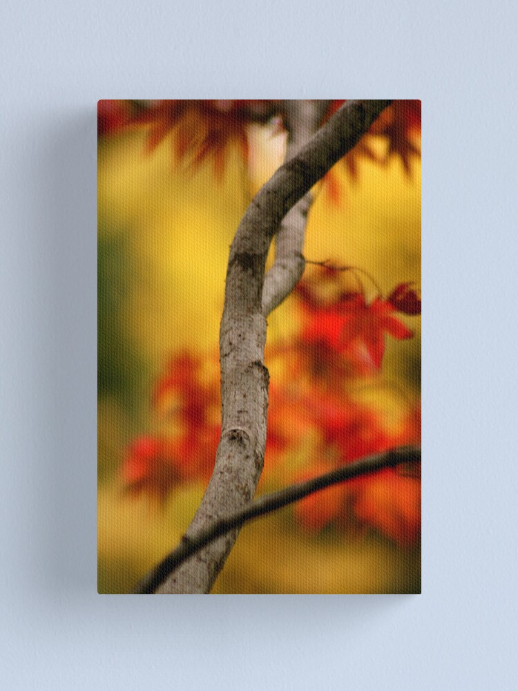 Alternate view of Autumnal colours Canvas Print