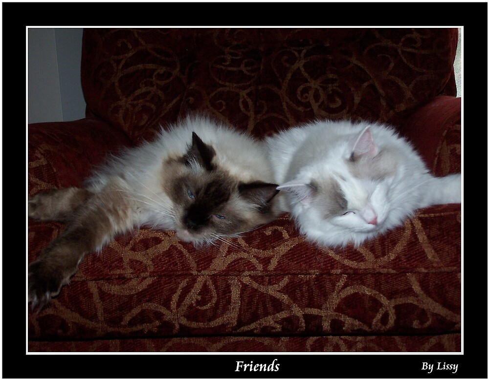 Friends by Lissy