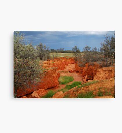 Natures Colours,OutbackAustralia Canvas Print