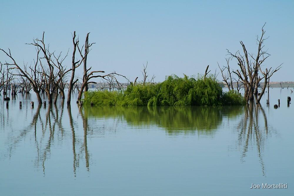 Lake Victoria,Outback NSW by Joe Mortelliti