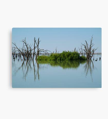 Lake Victoria,Outback NSW Canvas Print