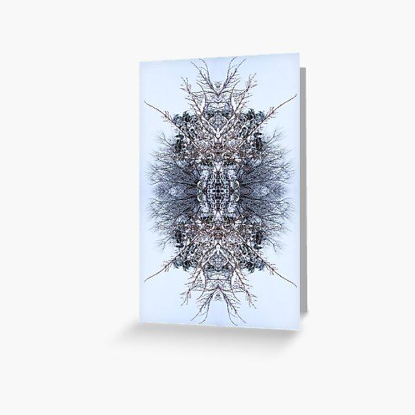 Snow Bow #5 Greeting Card