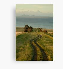 Spray Farm Lane Canvas Print