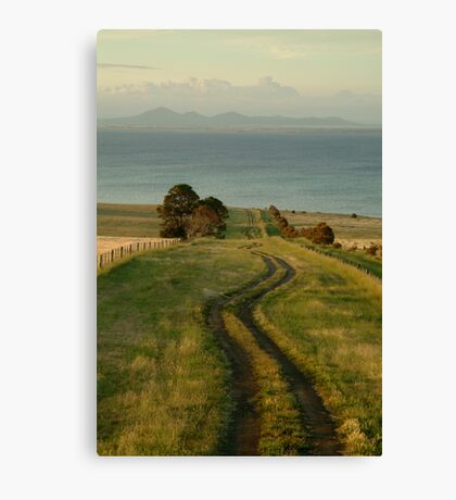 Spray Farm Lane Canvas Print