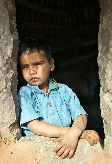 Bishnoi Boy by Anthony Begovic