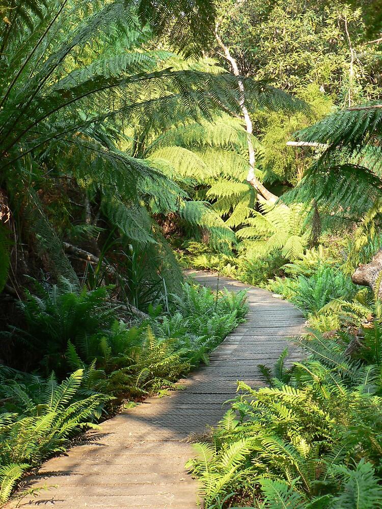 Garden Path by Treegirl