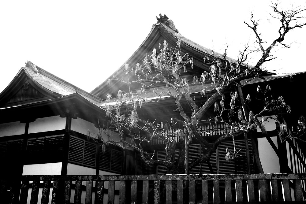 Black &  White temple by sunny