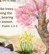 Growth, Psalm 1:2-3    Sticker