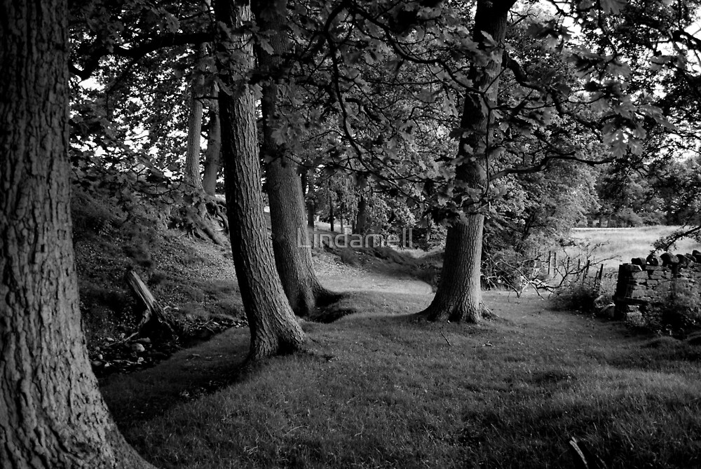 Hudswell Grange by Lindamell