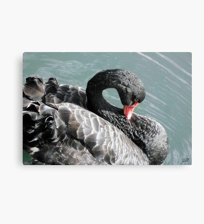 Swan Lake Solo Canvas Print