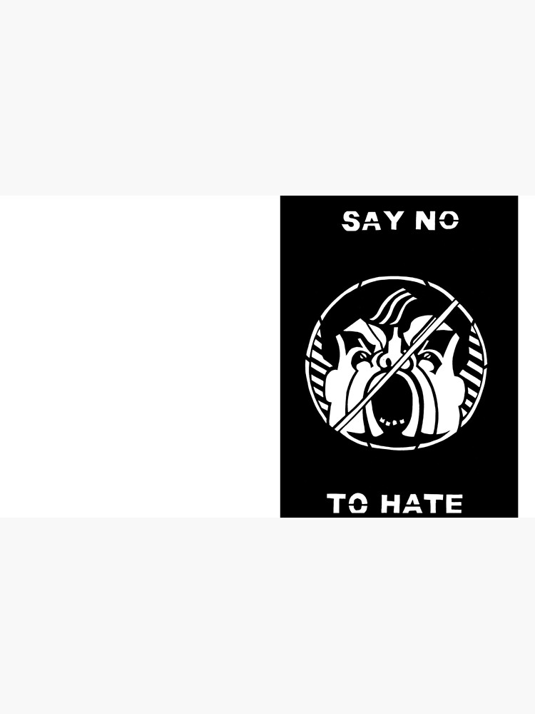 Say No to Hate by Lillian-Trettin