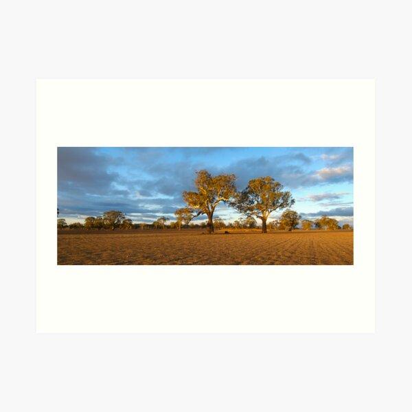 Drought-Stricken Farm Art Print