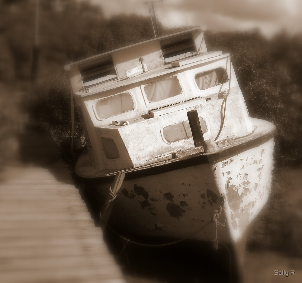 a fading memory by Sally R
