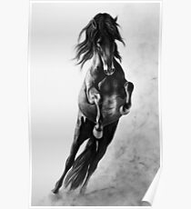 """""""On Wings of Faith"""" - Andalusian stallion Poster"""