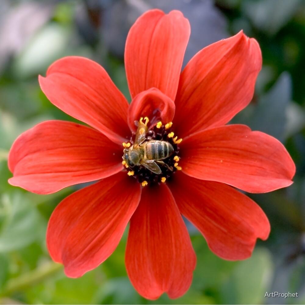 Pollen Aware 05 by ArtProphet