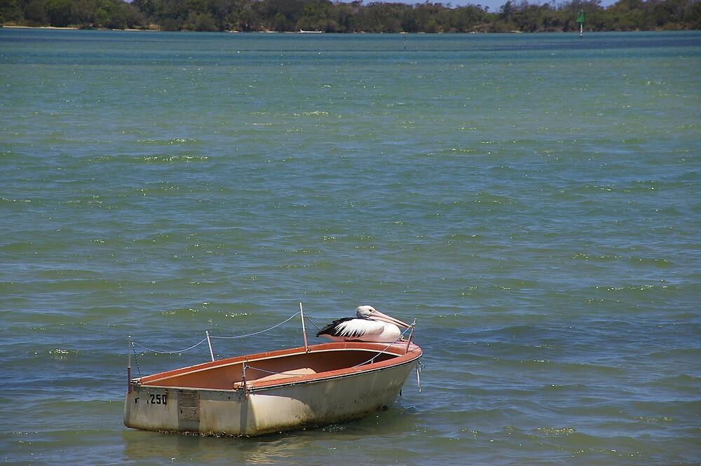 the invaders arrive by boat by Jill Vidgen