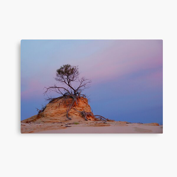 Mungo rock and tree Canvas Print