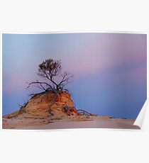 Mungo rock and tree Poster