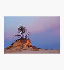 Mungo rock and tree Photographic Print