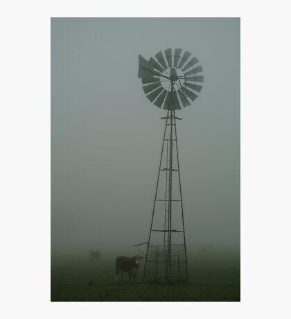 Windmill ,Macendon Ranges Photographic Print