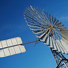 Big Outback Windmill, Boulia,Qld by Joe Mortelliti