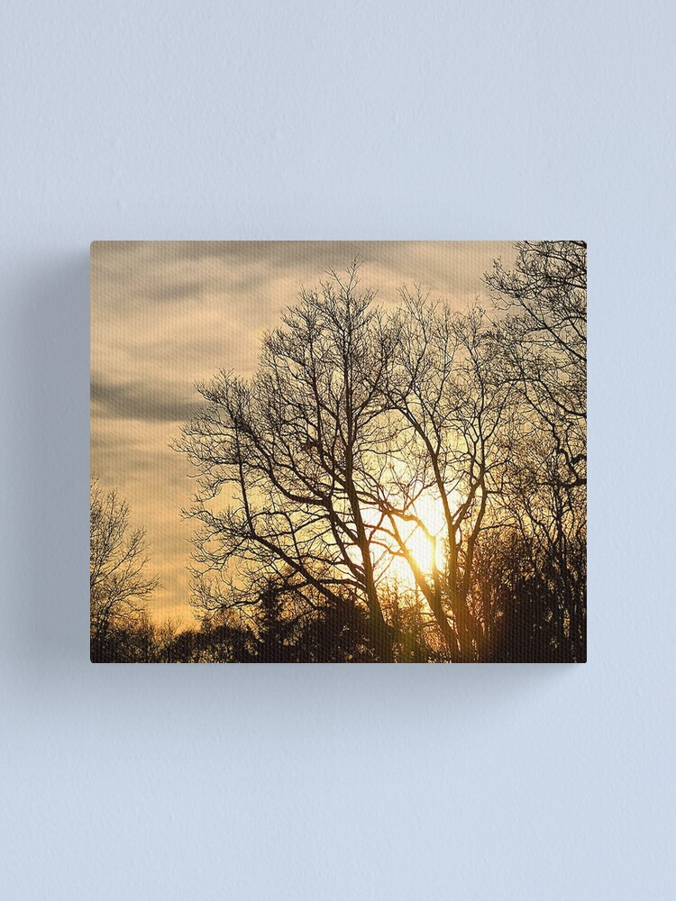 Alternate view of Tree in Golden Hour Canvas Print