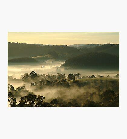 Valley Fog,Dollar, Gippsland Photographic Print