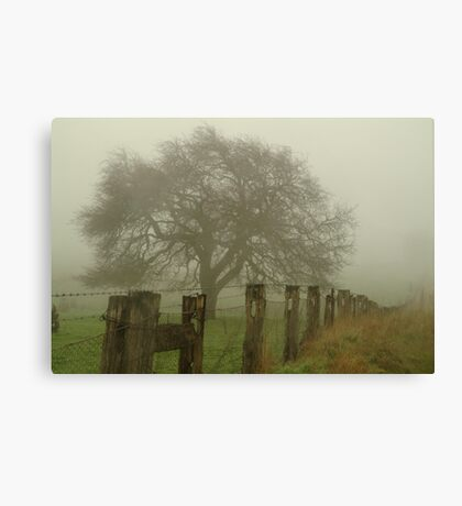 Foggy Morning, Macedon Ranges Canvas Print