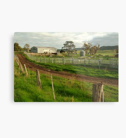 Dairy Farm,Rowsley Metal Print