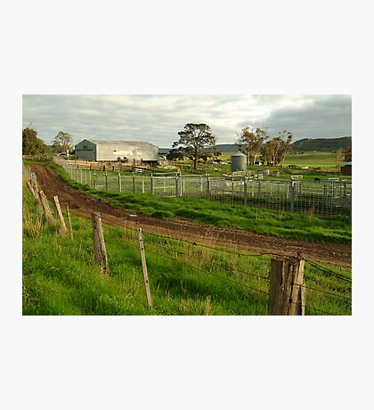 Dairy Farm,Rowsley Photographic Print