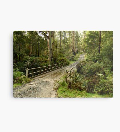 Bridge Track, Otway Ranges Metal Print