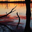 Lake Fyans Sunrise by Joe Mortelliti