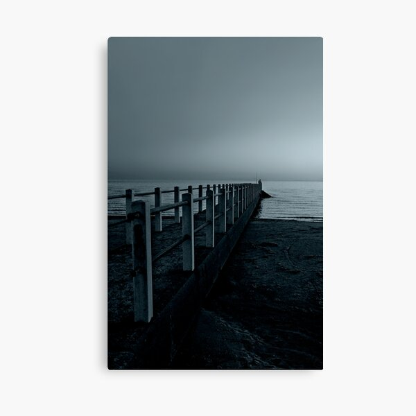 Moonlight Escapades Canvas Print