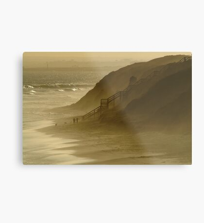 Walk the Dogs 13th Beach Metal Print