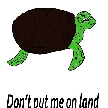 I am a Turtle, don't put me on land by Awendela
