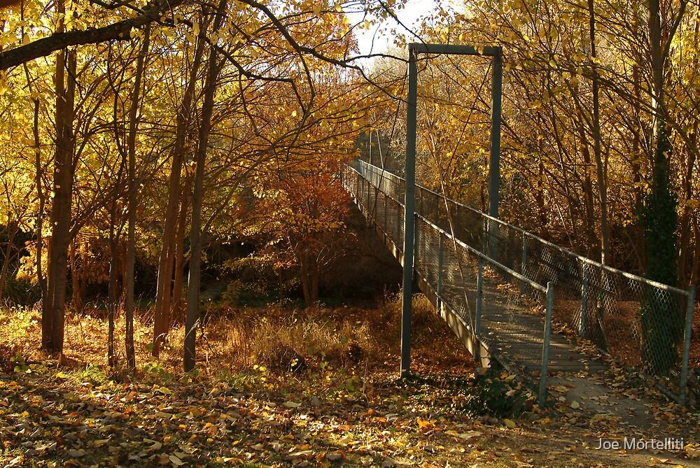 Autumn Walk Clunes by Joe Mortelliti